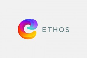 What is the Ethos Group?
