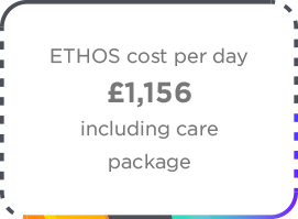 Ethos Group Cost Per Day Icon